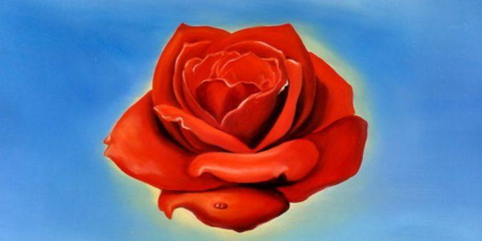 """La """"Rosa Meditativa"""" di Salvador Dalì"""