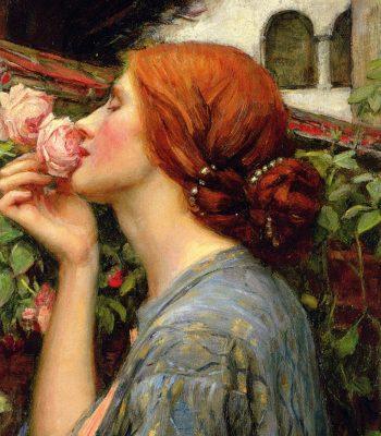 La Rosa nel Sogno