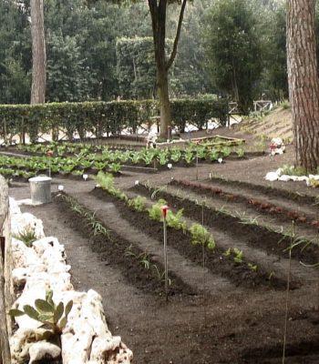 Il giardino della Luiss