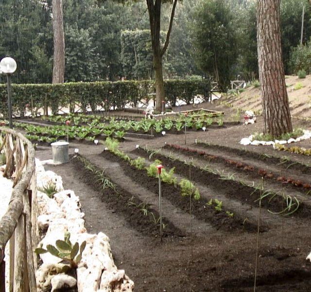 Il giardino della Luiss 2017