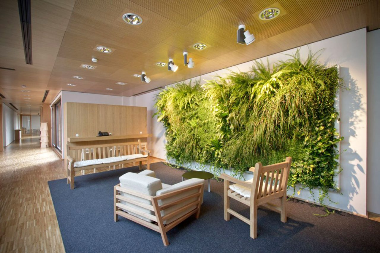 Il giardino verticale e il sogno 2017