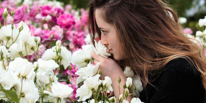 """VI Concorso di Poesia """"I sensi della Rosa"""""""
